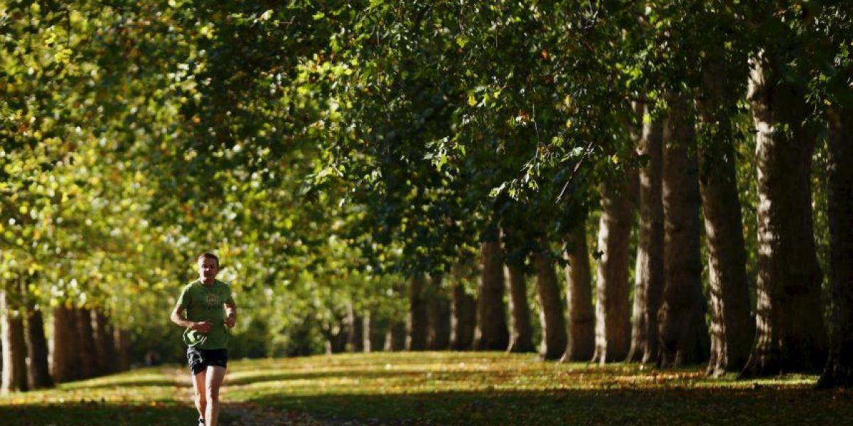 Fotos: 6 diferencias entre corredor y