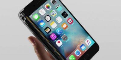 La pantalla casi ensamblada Foto:Apple