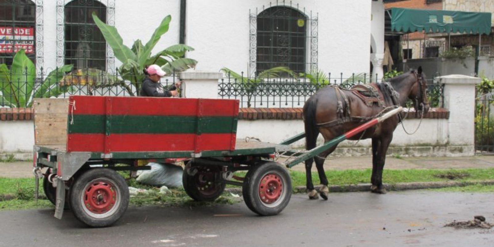 En 2014 dejaron de circular las populares 'Zorras' por las cales de Bogotá Foto:Archivo PUBLIMETRO