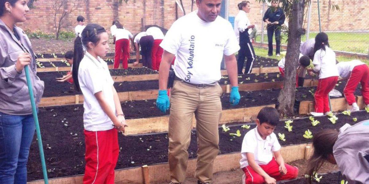 Fotos: El parque hecho con tubos que se puede visitar en el sur de Bogotá