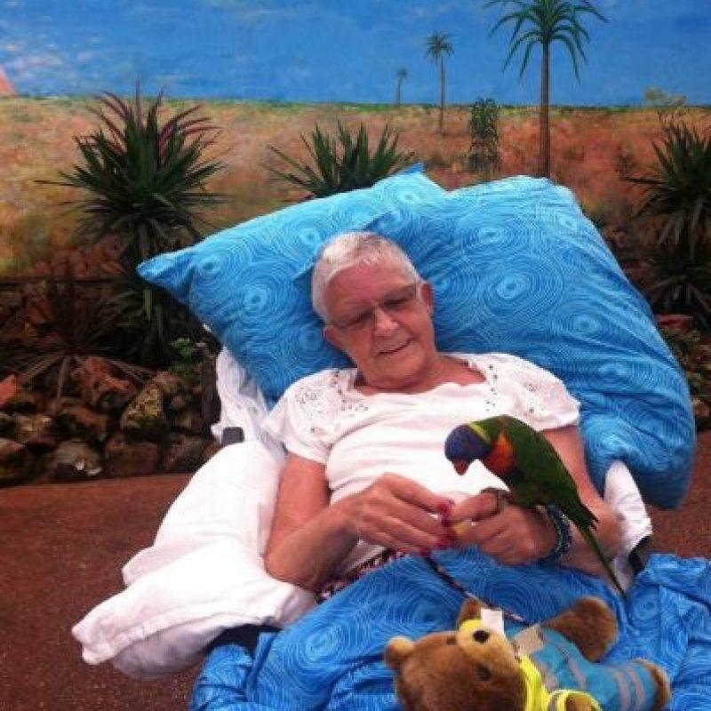 Convivir con las aves. Foto:Vía Facebook.com/wensenrijders