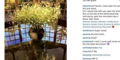 Y dedicó un poema de William Butler Yeats en Instagram. Foto:Instagram/littleirishcat