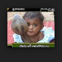 Esta bebe convive con una cobra. Foto:Vía Twitter