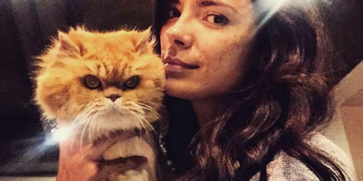 Viña Machado llora la muerte de su gata Akira