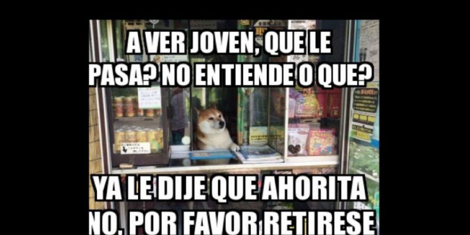 """Luego se creó el meme en Latinoamérica. También comenzó a usarse con otros perros y shibas como """"Doge"""". Foto:vía Twitter"""