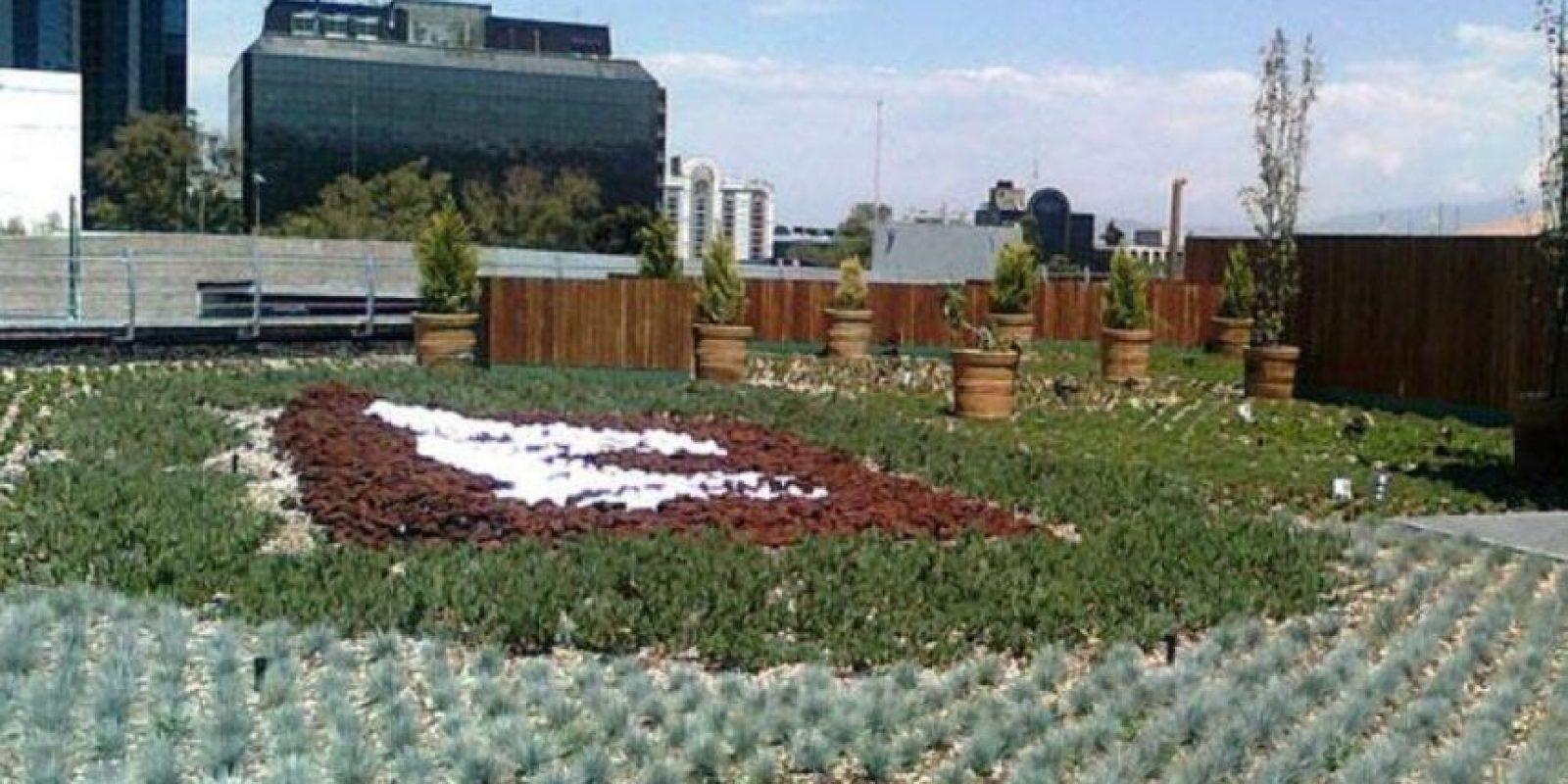 La azotea verde más grande de América Latina. Foto:Vía twitter.com/CapitalMexico