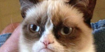 Quien tiene una expresión gruñona Foto:Vái Twitter