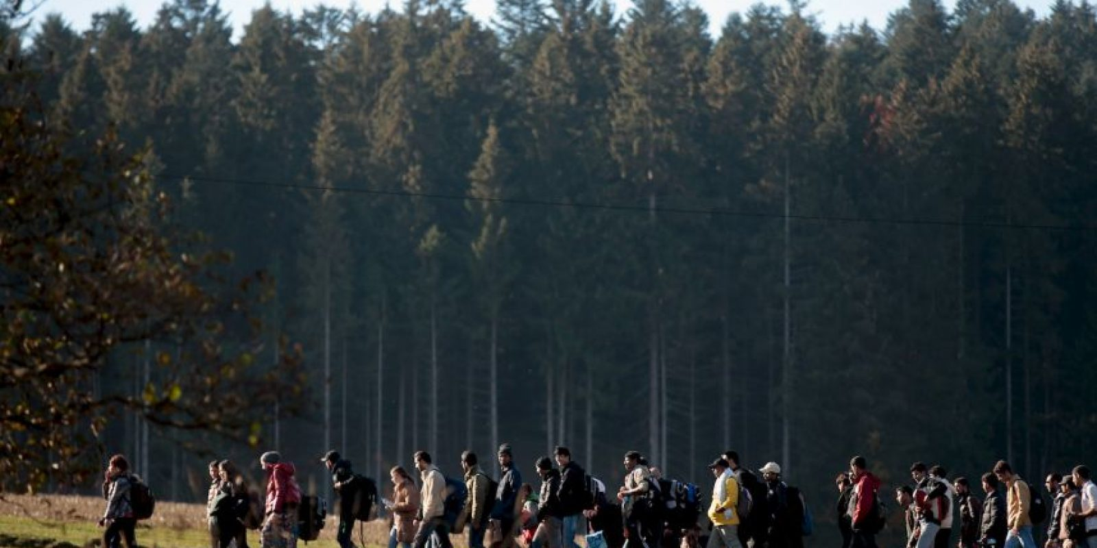 Esperan a 800 mil migrantes para 2015 Foto: Getty Images