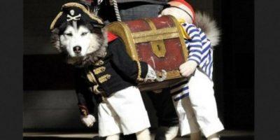 Pirata desconcertado… Foto:Reddit