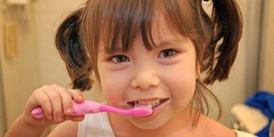 Los dientes están diseñados para triturar alimentos y la goma de mascar es suave. De este modo, los dientes comienzan a tocarse y se astillan. Foto:Flickr