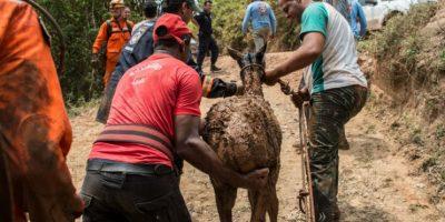 El Departamento de Bomberos de la prefectura de Mariana busca víctimas y desaparecidos. Foto:AFP