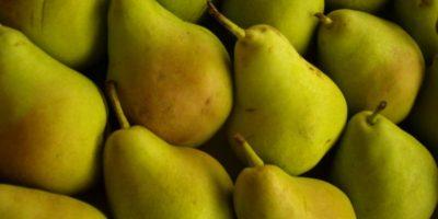 Comer un par antes de la noche de beber en exceso podría aliviar los síntomas de la resaca. Cabe señalar que el único tipo de pera probado en el estudio fue la pera asiática, o nashi. Foto:Pixabay