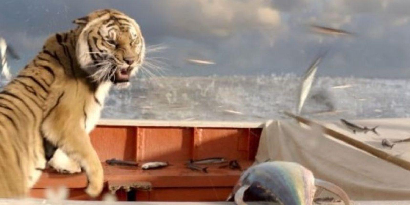 """13- El tigre de """"Una Aventura Extraordinaria"""". Foto:IMDB"""
