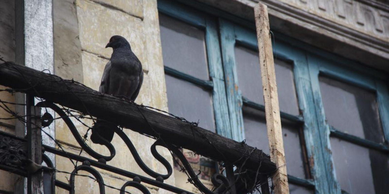 Resultado de imagen para apartamentos edificios feos colombia