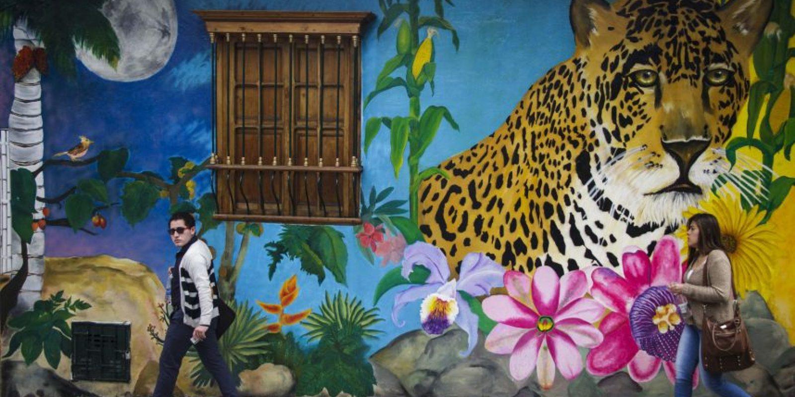"""Arte urbano. Aunque en Bogotá hay decenas de bellos grafitis, como este de La Candelaria, según William Molano, representante de la Secretaría de Ambiente, """"el 86% de grafitis en las calles es arte vandálico"""". Foto:Carlos Bernate"""