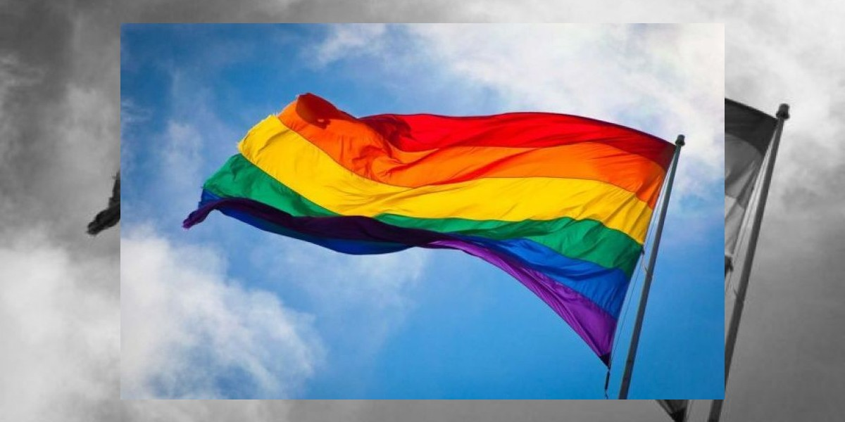Parejas homosexuales podrán registrar a sus hijos biológicos