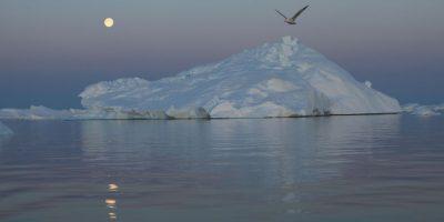 Ya que el nivel del mar podría aumentar más de 18 pulgadas (48 centímetros) Foto:Getty Images