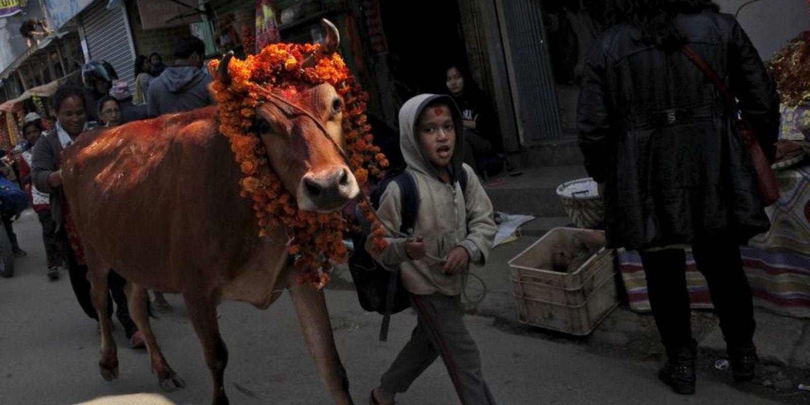 En Nepal se celebró el Festival Thiar de cinco días Foto:AP