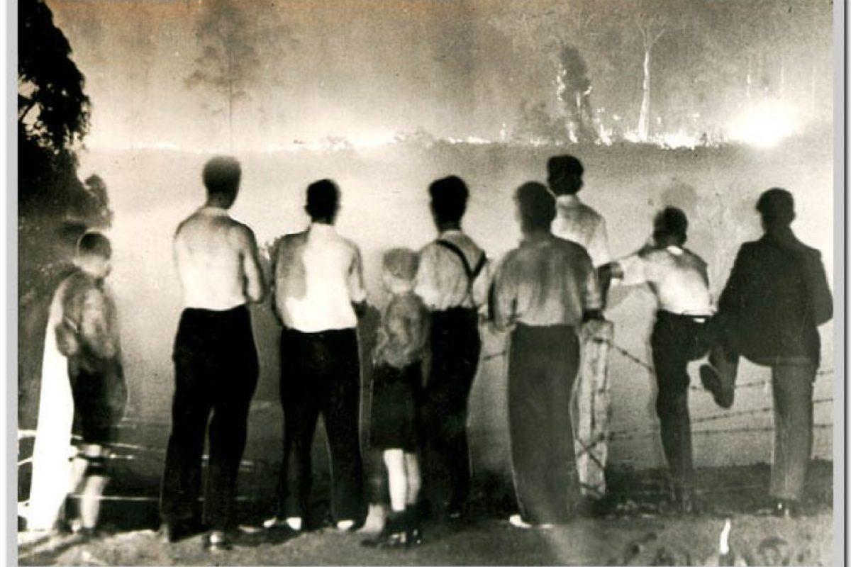 Casi dos millones de hectáreas fueron consumidas por el fuego y son considerados uno de los peores desastres naturales en la historia del mundo Foto:www.depi.vic.gov.au