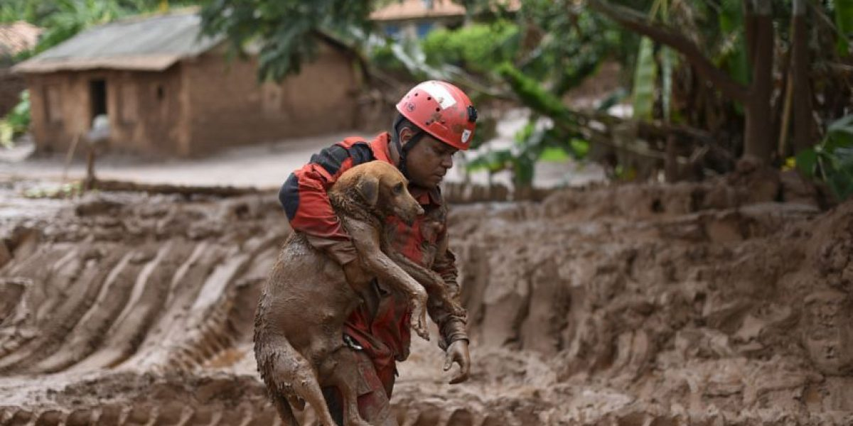Temporada de lluvias deja más de 10.000 familias afectadas