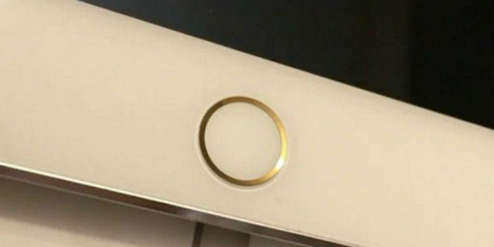 Este es el iPad Pro con oro. Foto:9to5Mac.com