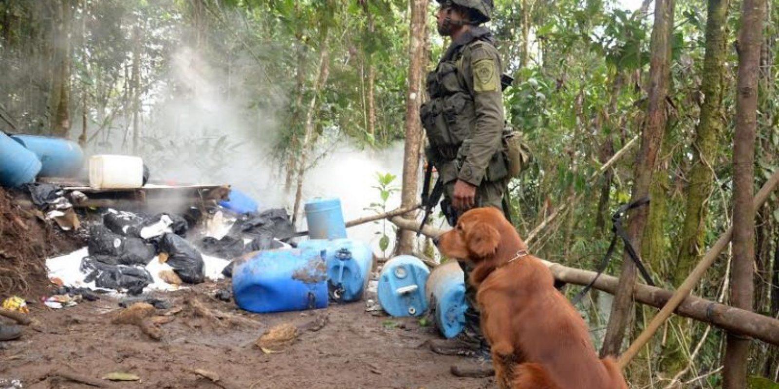 Foto:Cortesía: Policía Metropolitana del Valle de Aburrá
