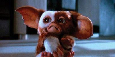 """""""Gizmo"""" es el único que no se convierte gracias a que no fue alimentado. Foto:Warner Bros"""