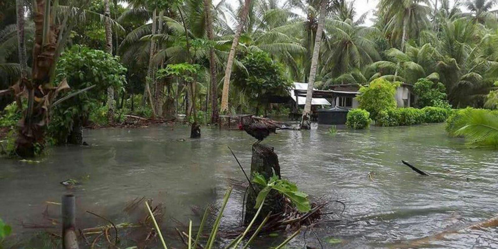 Está amenazada por el cambio climático. Foto:Getty Images