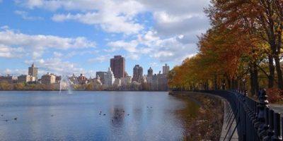 Central Park en Nueva York, Estados Unidos. Foto:vía instagram.com/soulsofsweden