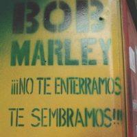 ¿Viva la hierba? Foto:vía Colombianadas.net