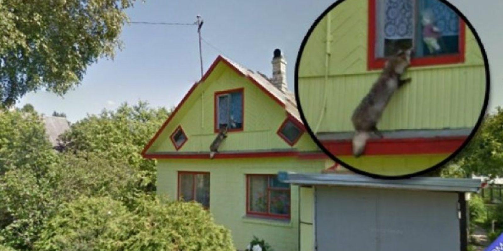 Ladrones en situaciones peculiares Foto:Tumblr