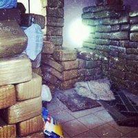 También de la droga y sus formas de transportarla Foto:Instagram.com – Archivo