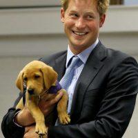 2009- En Reino Unido, durante una visita a una organización que protege a los perros. Foto:Getty Images