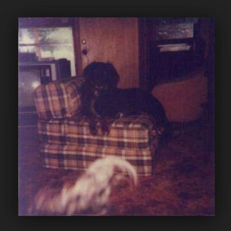 Aquí se aprecia otra silueta debajo del sillón. Foto:Vía Tumblr