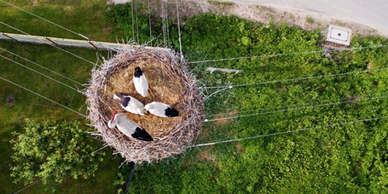Polonia Foto:Vía Dronestagr.am