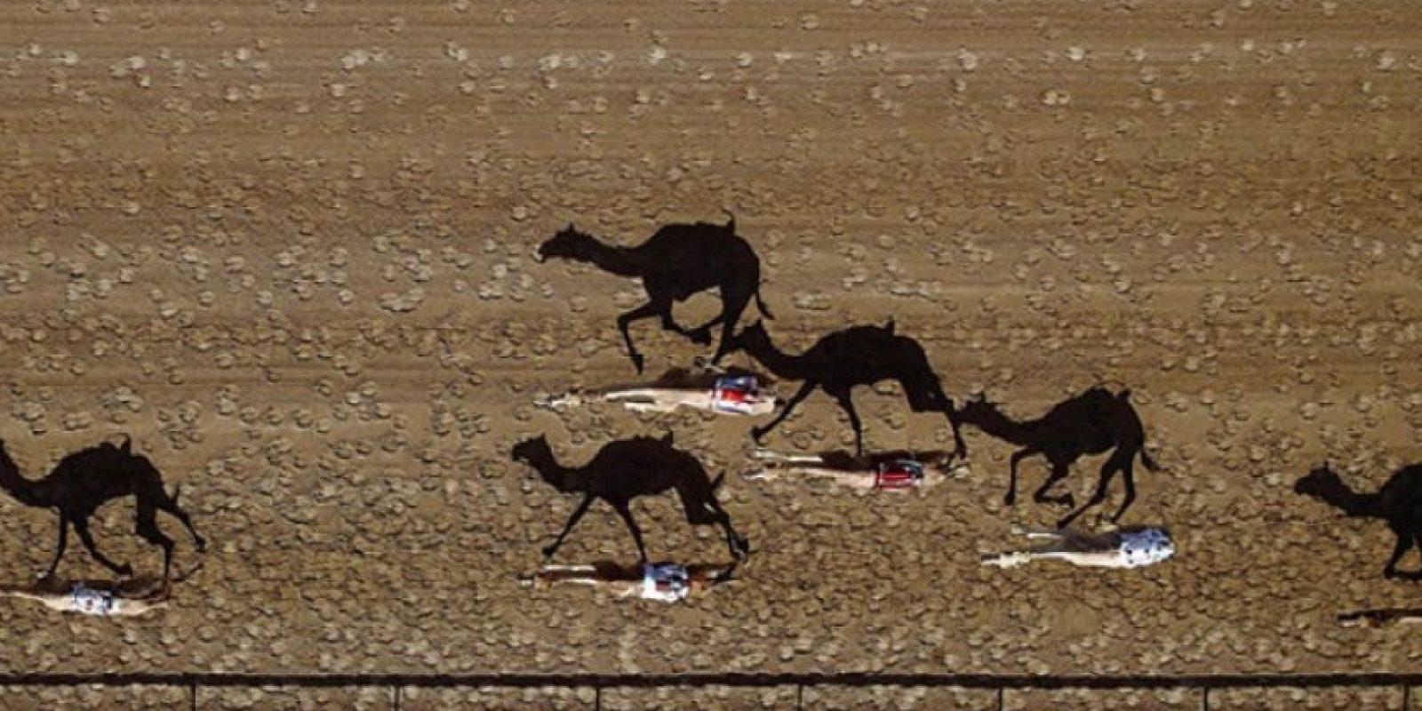 Pista de carreras de camellos Al Marmoun en Dubai, Emiratos Árabes Unidos. Foto:Vía Dronestagr.am