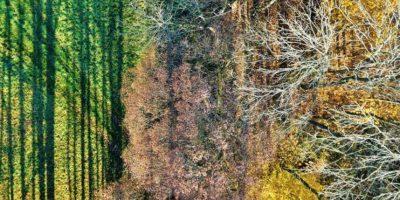 Poitou-Charentes en Francia Foto:Vía Dronestagr.am