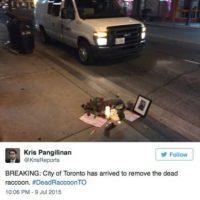 """A lo que el ciudadano respondió: """"Gracias, pobre mapache, tuvo una noche difícil"""". Foto:Vía Twitter.com/KrisReports"""