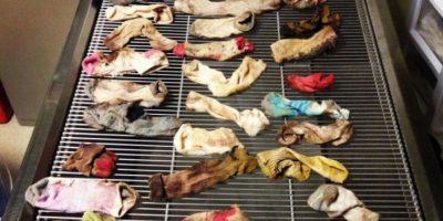 Los calcetines extraídos del estómago Foto:Vía Veterinary Practice