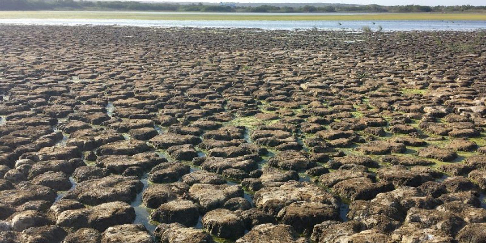 El agua con que se ha llenado el lago ha creado canales sobre la tierra erosionada. Foto:Lina Robles