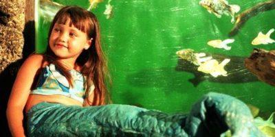 Actuó junto con Laura Flórez y Nicandro Díaz. Foto:vía Televisa