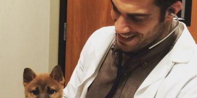 Evidentemente no solo los animales cautivaron a la audencia. Foto:Vía Instagram/@dr.evanantin