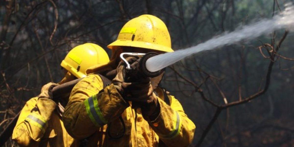 Ministro de Ambiente prohíbe los asados para evitar incendios