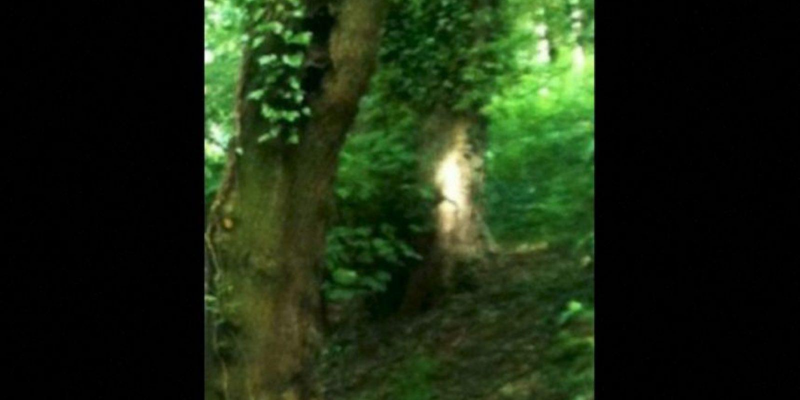 7. Elaine Steward, de 65 años, se llevó una gran sopresa al descubrir algo insólito en una de las fotos que tomó mientras realizaba una caminata. Foto:Birminghamhistory