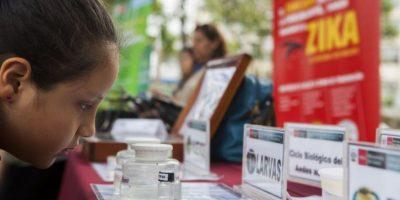 Esta enfermedad es causada por un virus transmitido por mosquitos del género Aedes. Foto:AFP