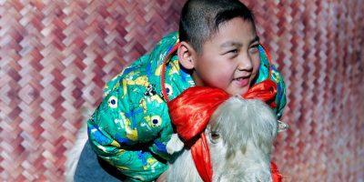 8. La cabra Foto:Getty Images