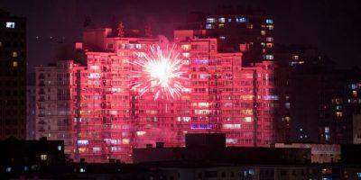 El año 2017 será del gallo, el décimo signo del calendario lunar. Foto:AFP