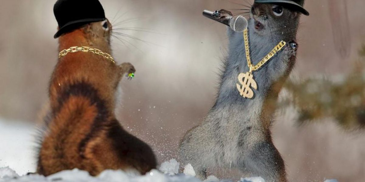 Photoshop: Una tierna foto de ardillas enloquece a Redes Sociales
