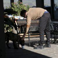 Orlando Bloom y sus amados perros Foto:Vía Grosby Group