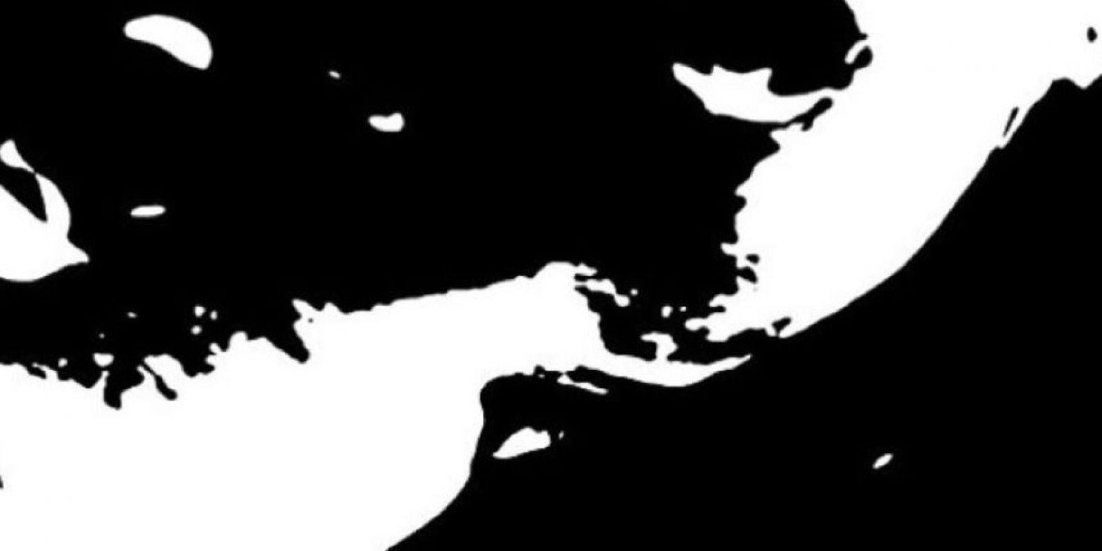 ¿Pueden ver al bebé en esta foto? Científicos de la Universidad de Cardiff y Cambridge utilizan esta imagen en blanco y negro para entender cómo funciona el cerebro. Foto:Vía Pnas.org